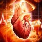 Corazón – Mitos que no son ciertos