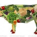 Aditivos de origen animal – Imprescindible para veganos
