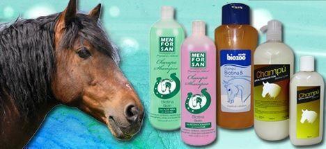 Champú de caballos a la biotina ¿Moda, mito o verdad?