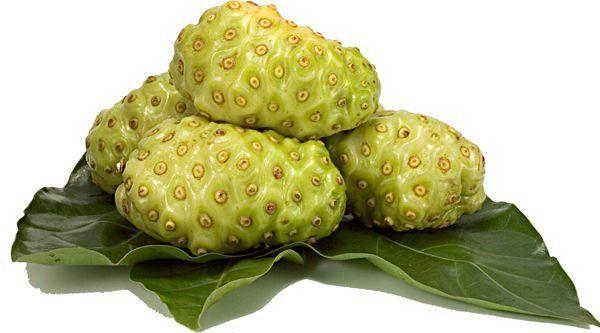 Noni – La fruta que reduce la hipertensión arterial