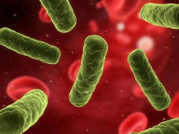 Casos de cáncer que pueden estar causados por una infección