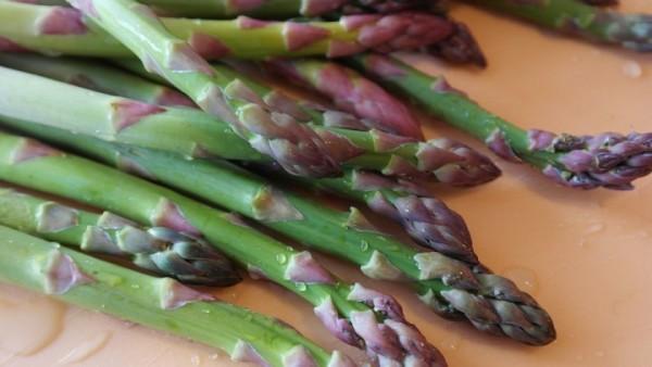 Inulina, alimento para la flora intestinal