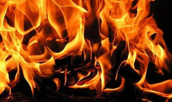 Termogénicos para quemar grasas
