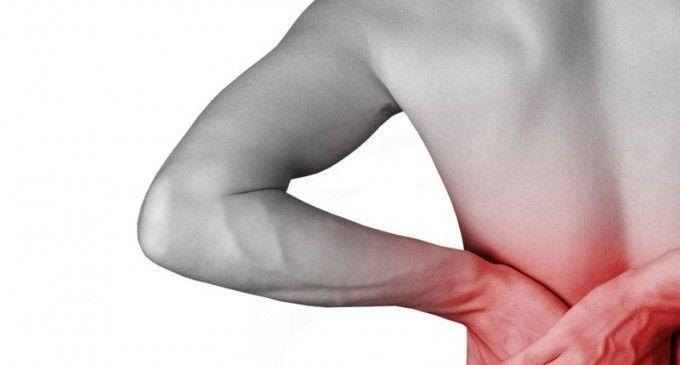 Harpagofito – Potente antiinflamatorio natural