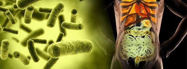 Disbiosis intestinal es una palabra desconocida para muchos