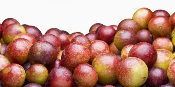 Camu Camu – Un súper alimento
