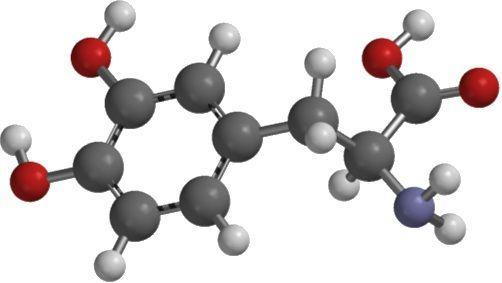 L-aminoácidos