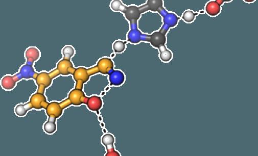 S.O.D. o Superóxido Dismutasa