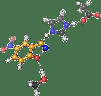 Superóxido Dismutasa o S.O.D. – Una enzima especial