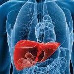 Hígado graso o esteatosis hepática ¿Qué es realmente?