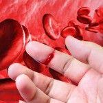 Hemofilia – ¿Una enfermedad para toda la vida?