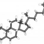 Esteroides – Los hay generados por el cuerpo y sintéticos