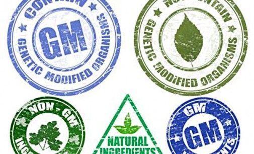 OMG significa Organismo Modificado Genéticamente