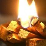 Palo Santo o madera sagrada. Una resina olorosa
