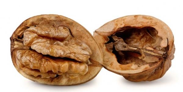 Alimento rancio – Es el alimento oleoso con mal olor