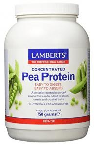 Seitán - proteína vegetal