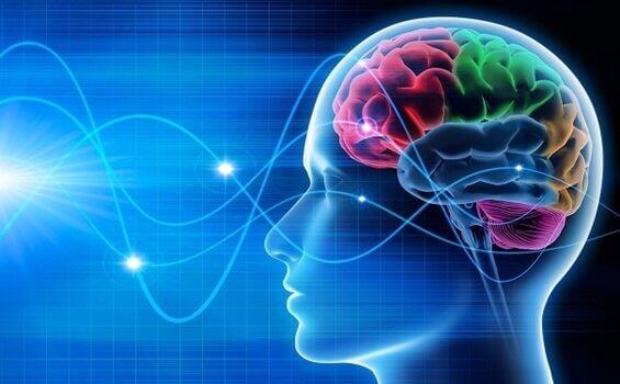 ¿Qué son las ondas cerebrales?
