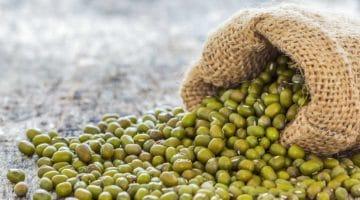 Cuidado con la soja en la alimentación